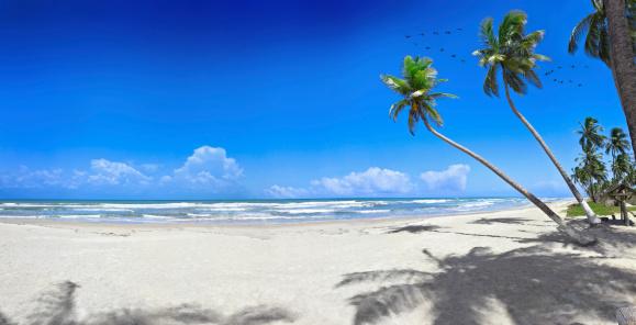Voyage à Tahiti, vol en direction du Paradis