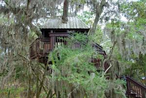 Offrir une cabane dans les arbres