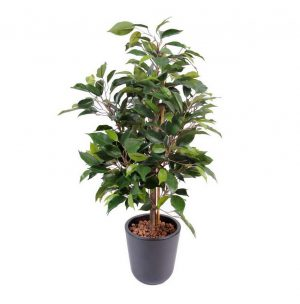 Cadeau insolite : offrir des plantes artificielles