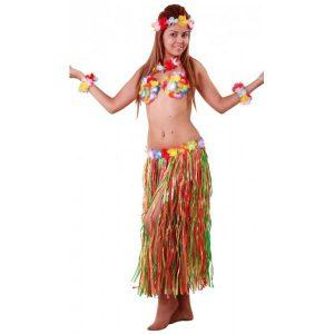 deguisement-hawaienne