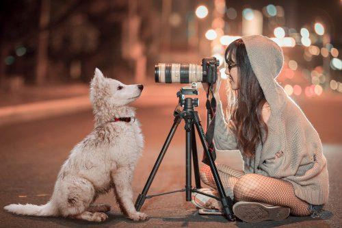 Idée cadeau : la panoplie complète du reporter photo animalier